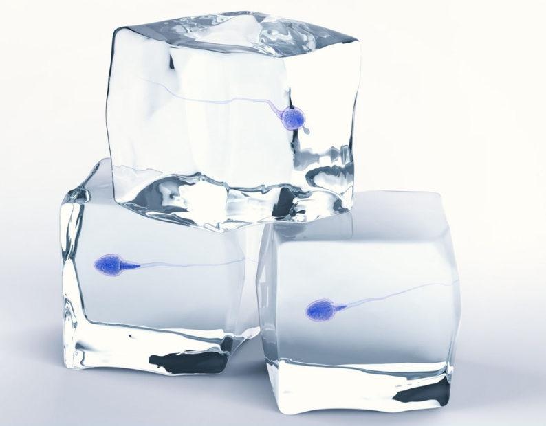 Sperm Freezing Is The Break You Need